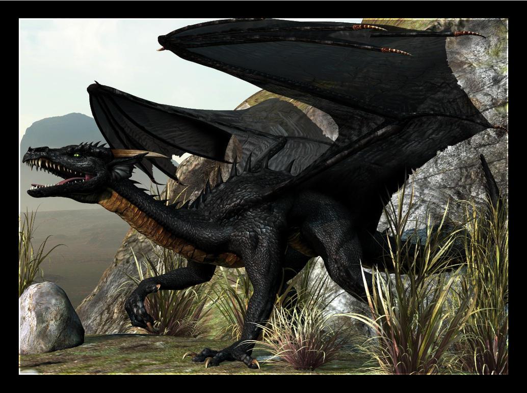 DC Black Dragon by Ascynd