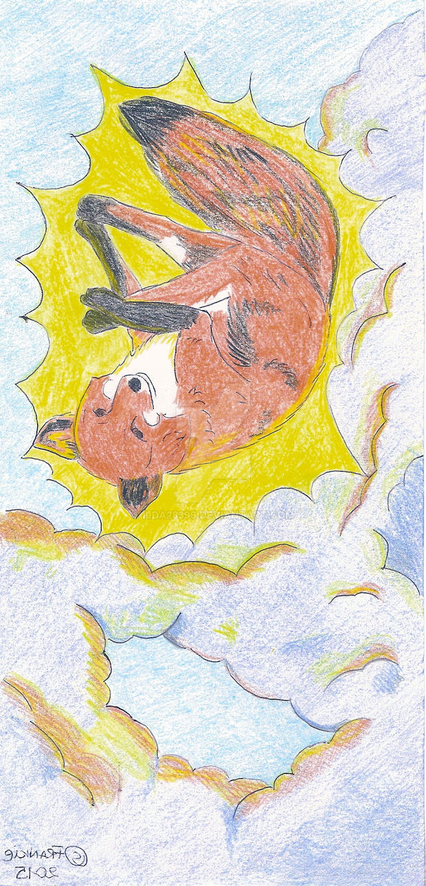 Fox Is For The Sun