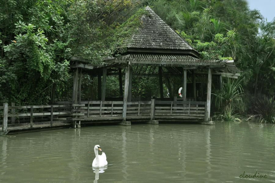 swan princess by little-arrow