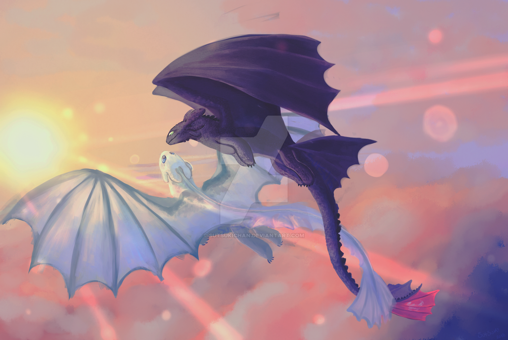 Toothless and Light Fury fanart by Sutsukichan on DeviantArt