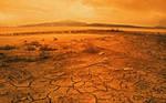 Hot day in the desert