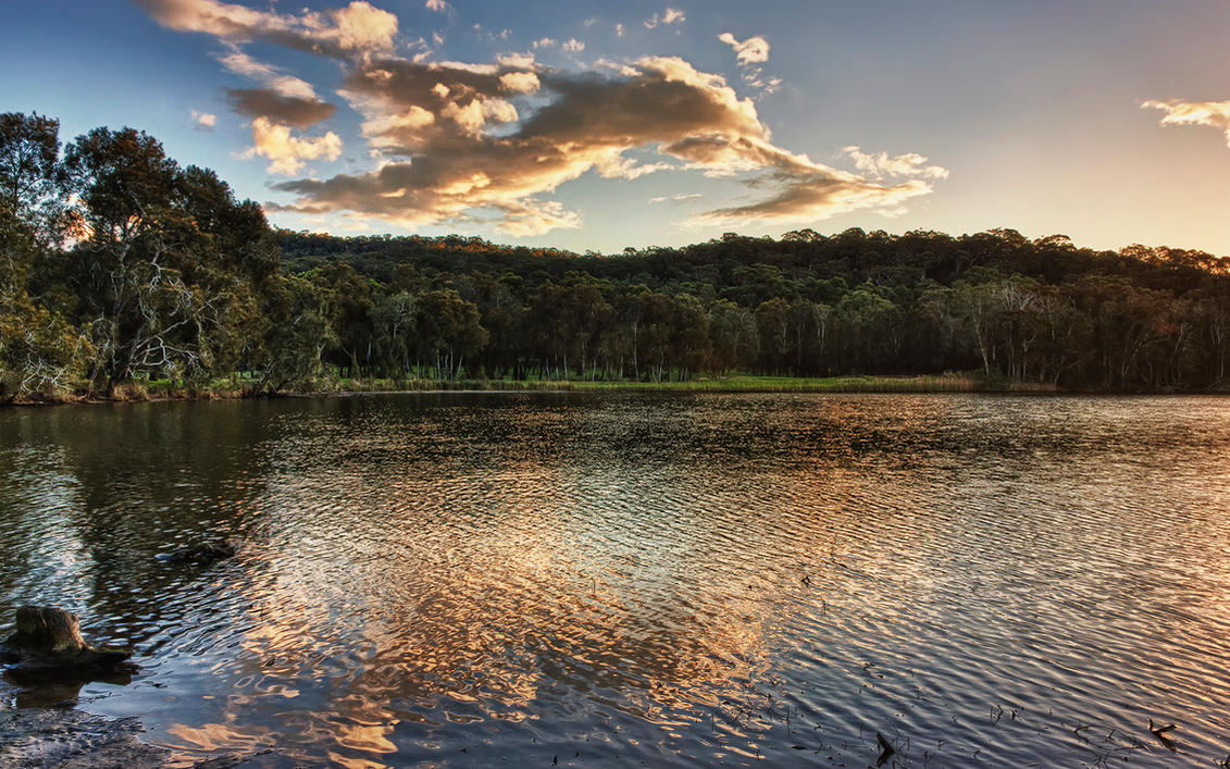 Narrabeen Lake 2 by SxyfrG