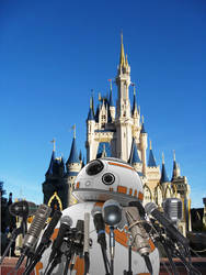 BB-8, at an amusement Park, at a press conference by lady-die