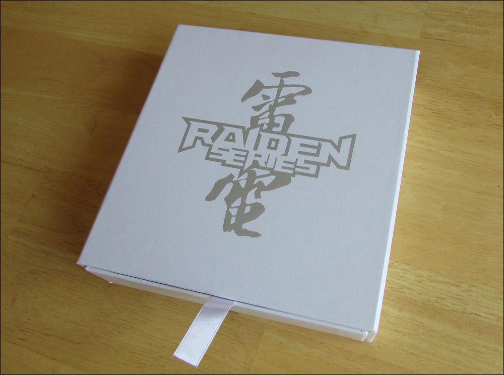raiden002_by_tkrep-d9zdbfs.jpg