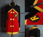 YOUNG JUSTICE: robin hoodie