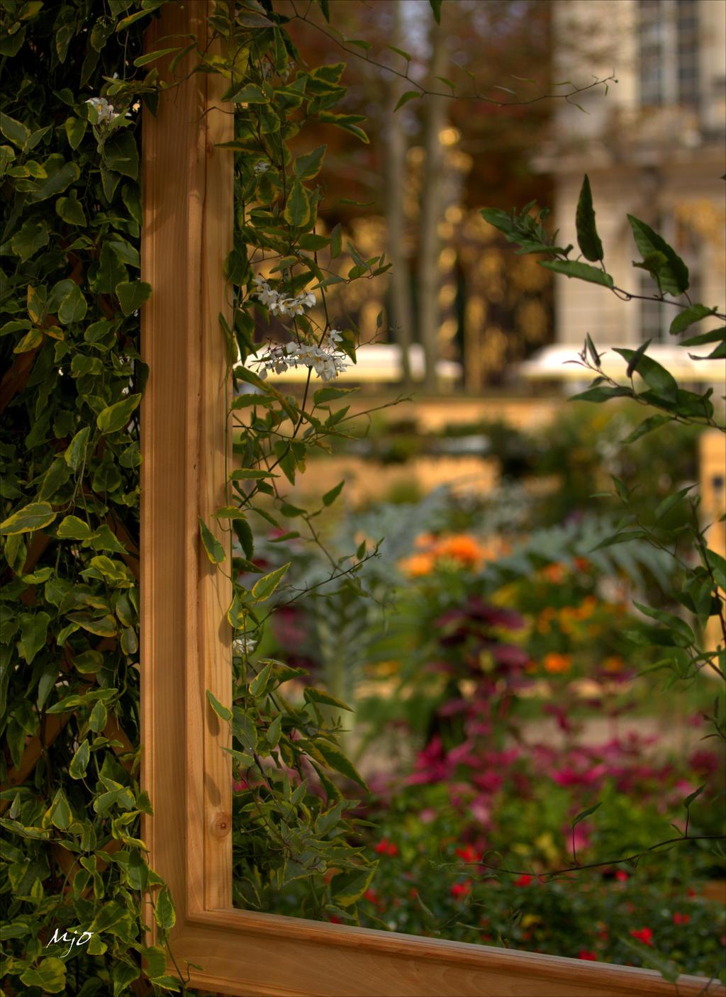 Window on the garden by amiejo