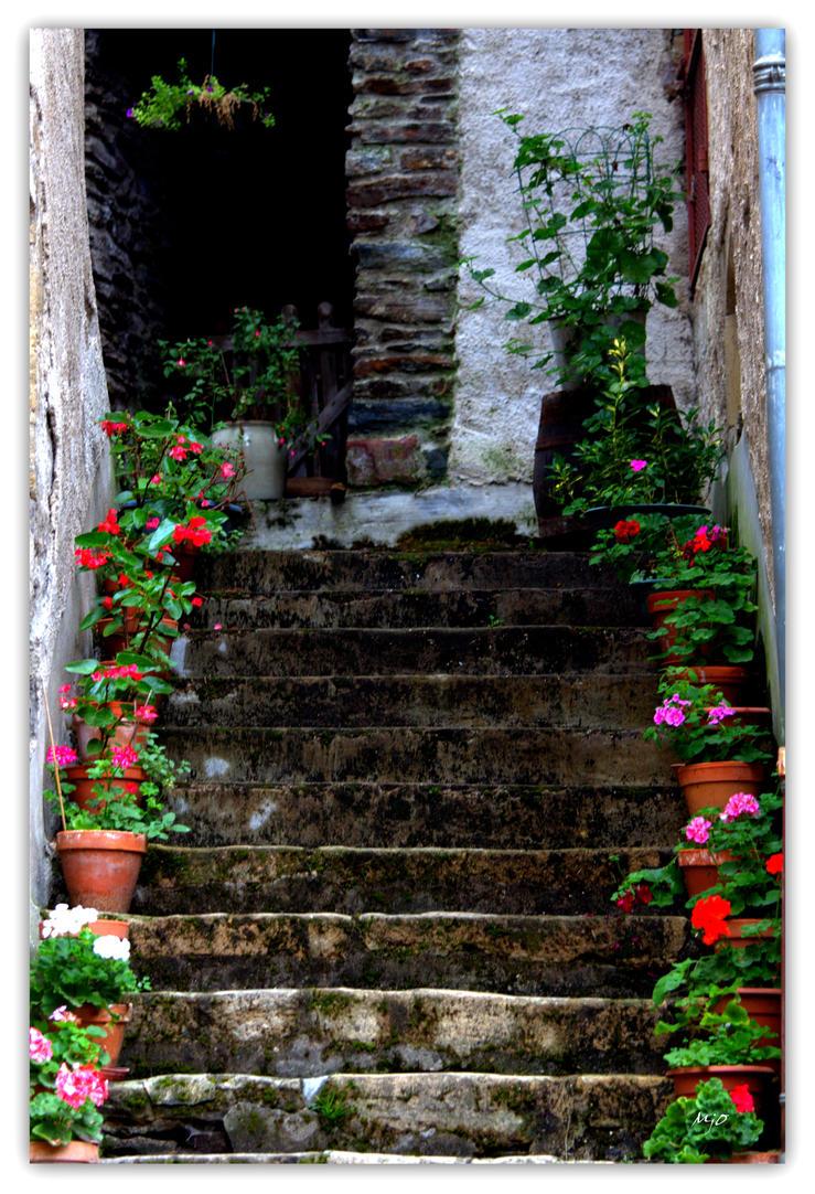 L Escalier by amiejo