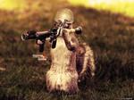 Squirrel Soldier