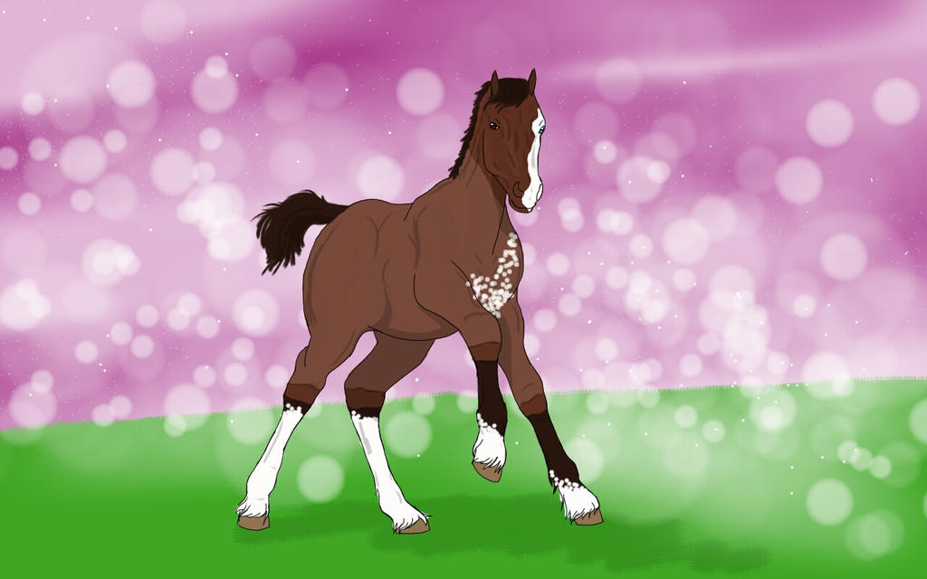 little Clydesdale foal by stephaniedraw
