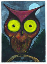 owl by marisangoea
