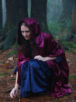 Lost In The Woods 3 by Talc-AlysStock
