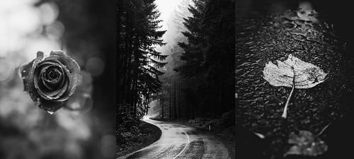 ~Dark Aesthetic~ by miz-inthesky