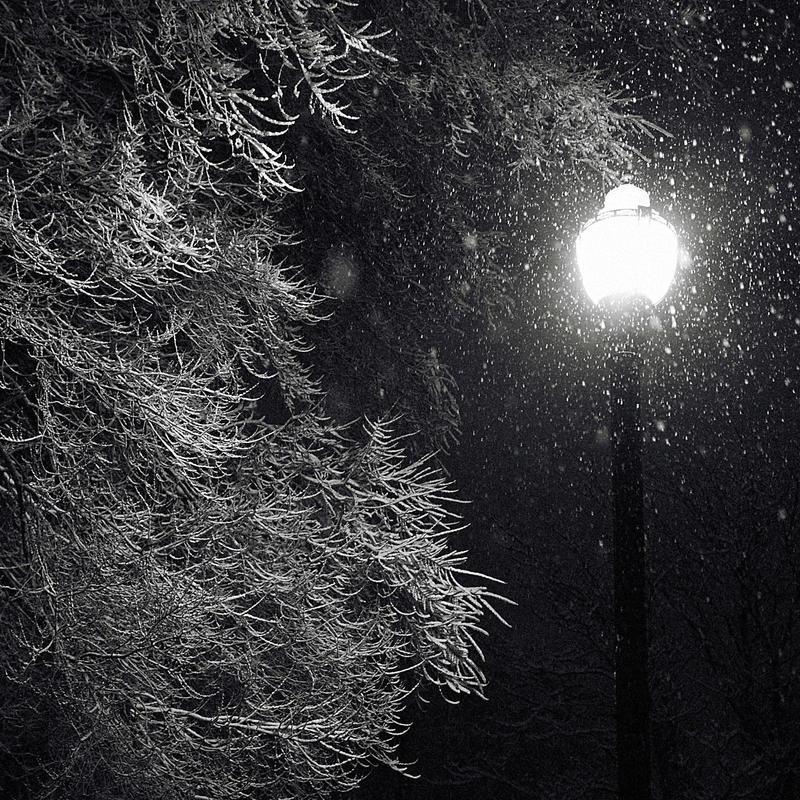 A walk in winter by TwistedLabel