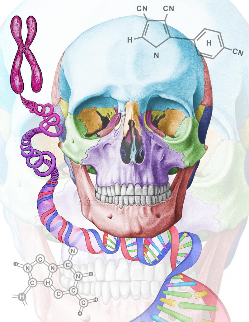 Lab Manual Cover Illustration by CAB-Art