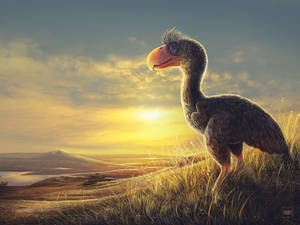 Paraphysornis Contemplating the Dawn