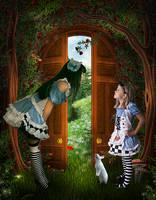 Alice vs Alice... by TL-Designz