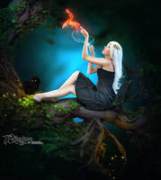 Practical Magic In The Woods by TL-Designz