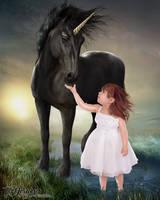 Black Stallion by TL-Designz