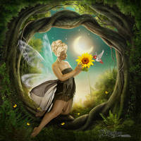 Midsummer Nights Dream by TL-Designz
