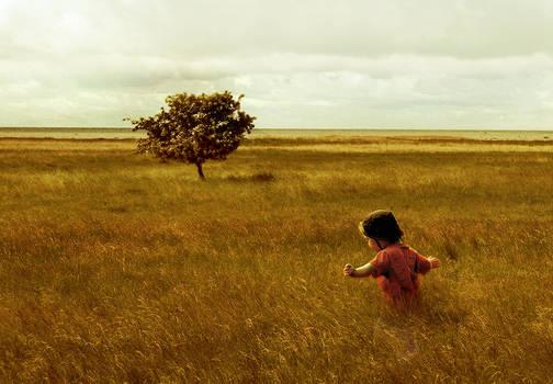 Andrew Wyeth inspired