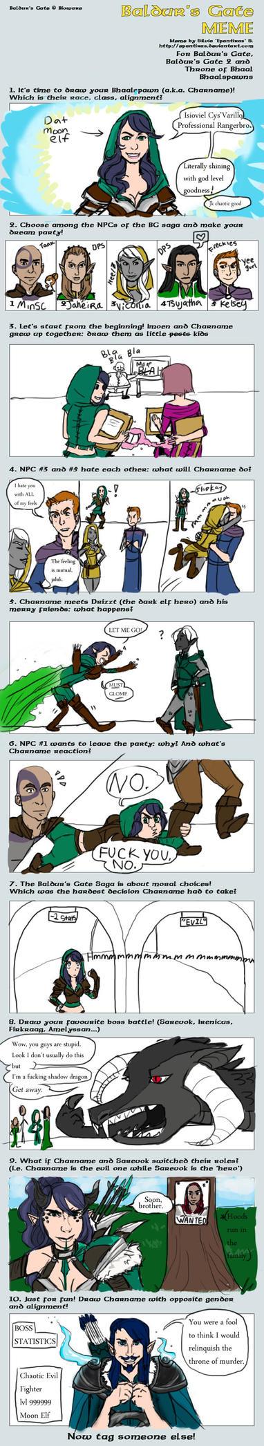 Baldurs Gate Meme by Magp1e