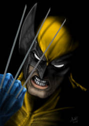 The Wolverine  by sketcher298