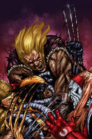 wolverine snikt by spidey0318