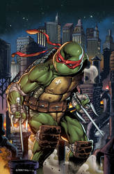 IDW's TMNT #102 exclusive cover