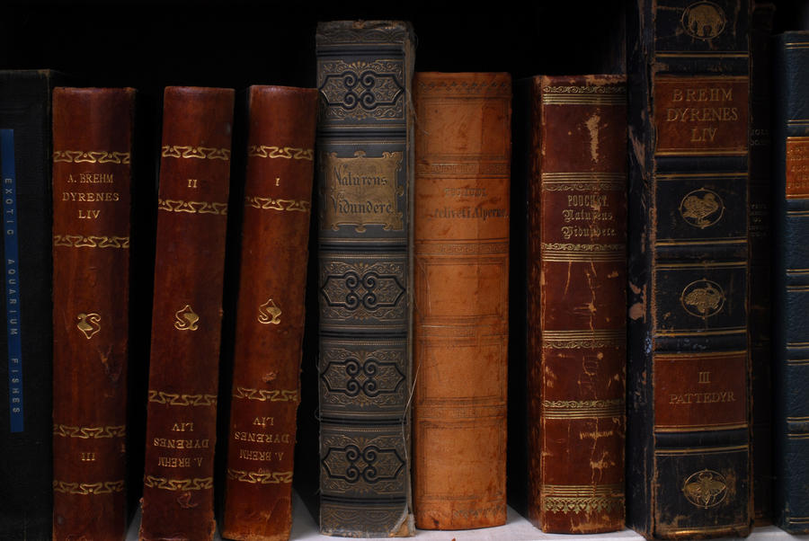 Old Books By Magicsnowflake On DeviantArt