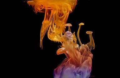 Emergence by magicsnowflake