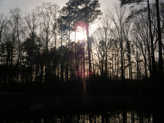 Sunset across the pond by keiji-sakamura