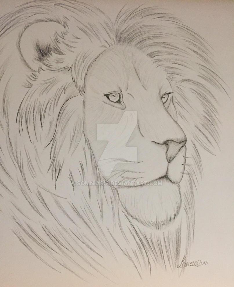 Lion || Traditonal Art by Somniaris