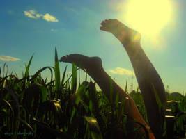 sunny by GirlLikeAngelA