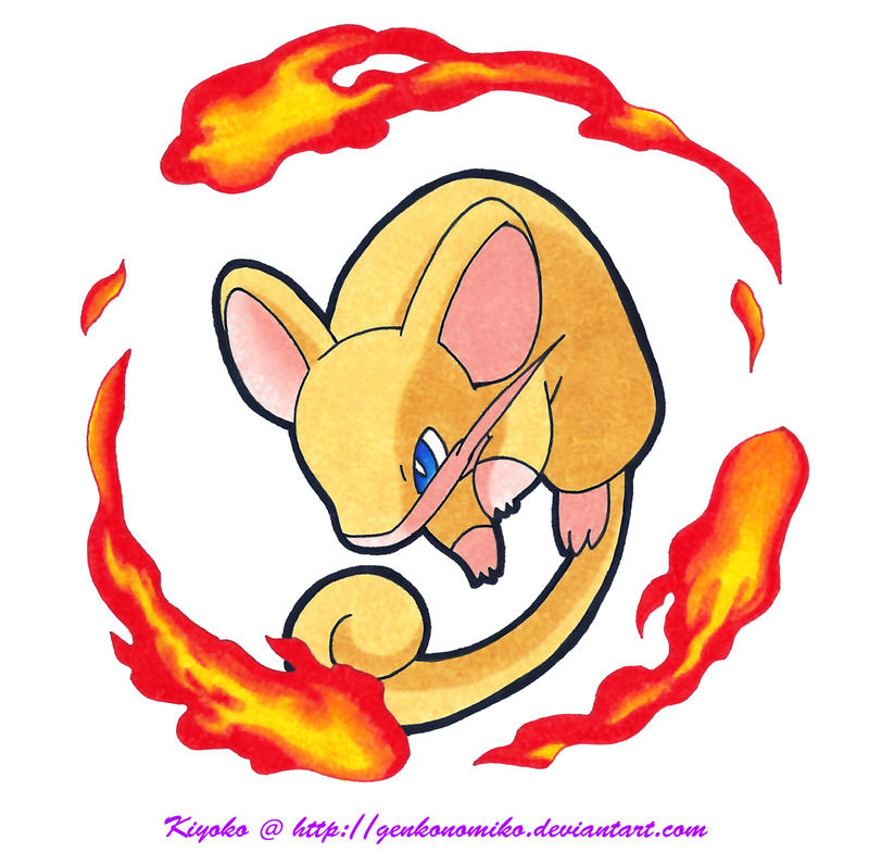 shiny_rattata_used_flame_wheel_by_genkon