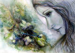 Lace Hydrangea...