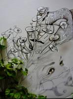 Euphorbia...... by TriciaS