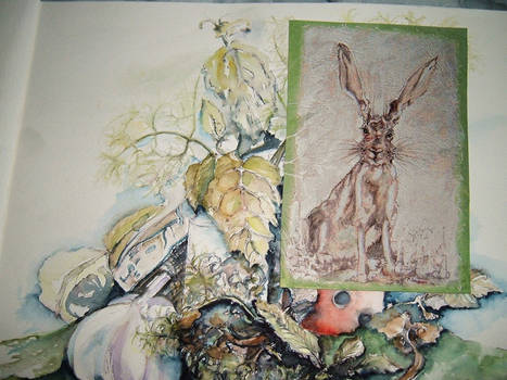 Hare in the kitchen ......