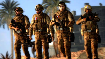 Multicam French Soldiers [DOF]