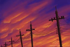 Pole wires by UszatyArbuz