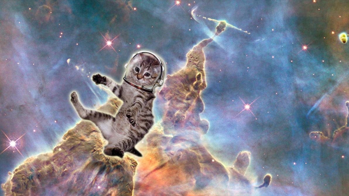 Cat-in-space-5 by UszatyArbuz