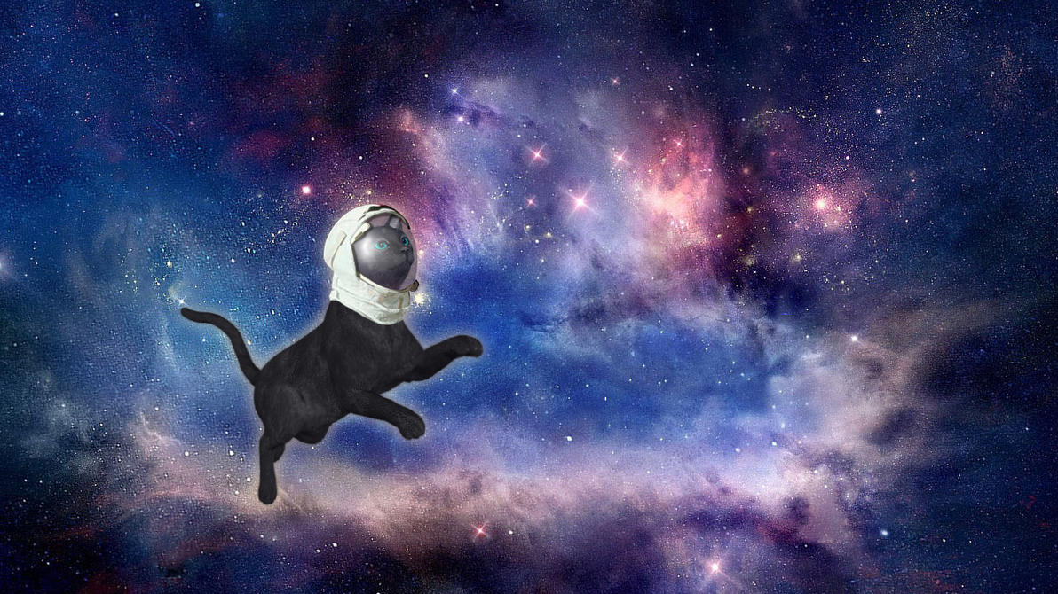 Cat-in-space-1 by UszatyArbuz
