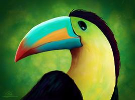 Profile of toucan by UszatyArbuz