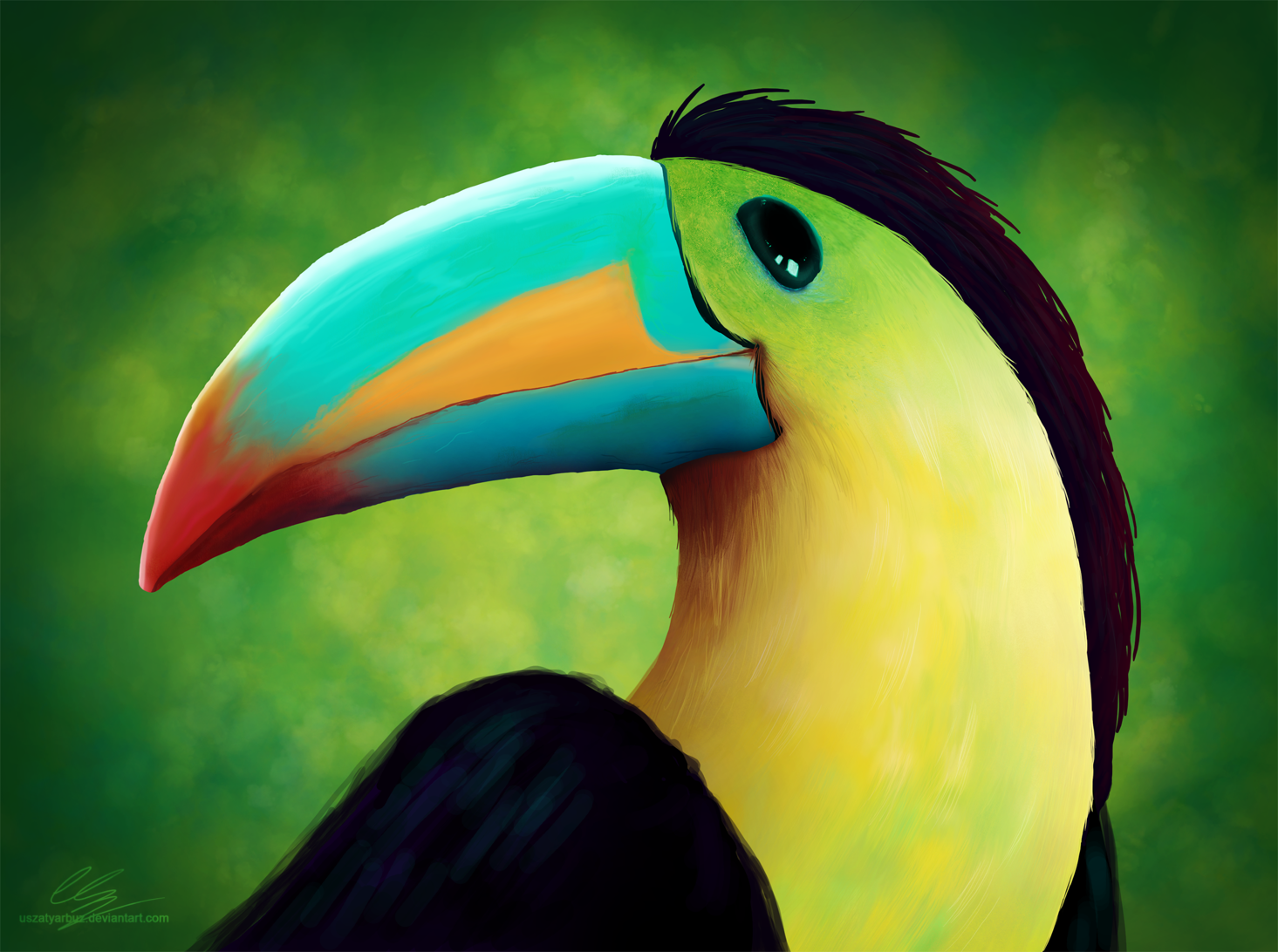 Profile of toucan