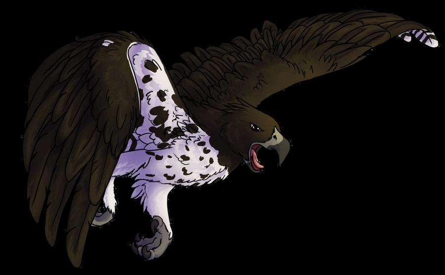 Martial Eagle by StormFalconFire on DeviantArt