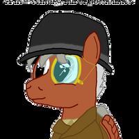 More Than A Century of Pony by brokenhero0409