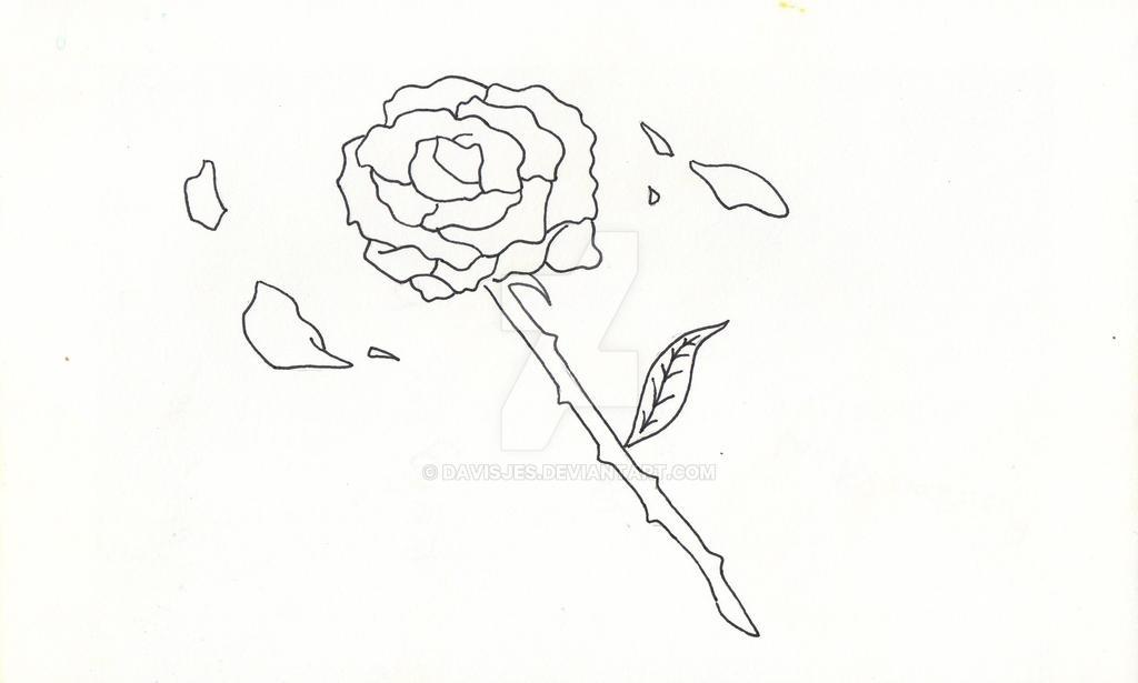 Moonlight Knight Rose! by DavisJes