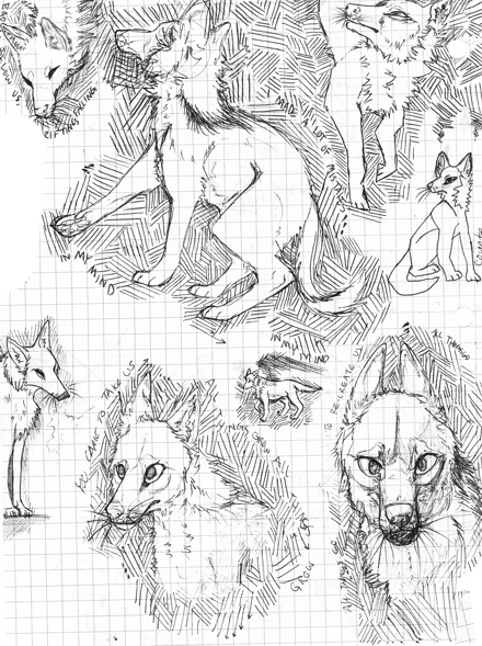 Coyote Sketches by bobby-pinns