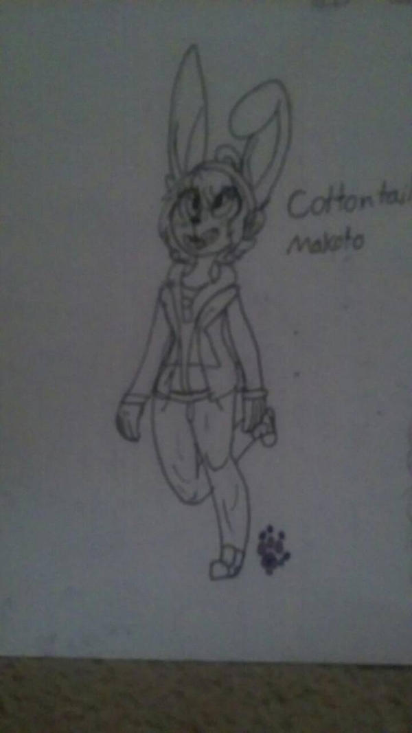 Cottontail Makoto  by CookieDaPuppeh