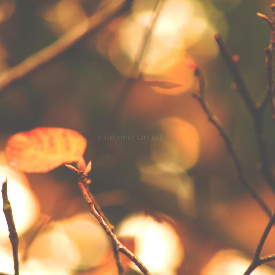 Magic Of Fall by EliseEnchanted