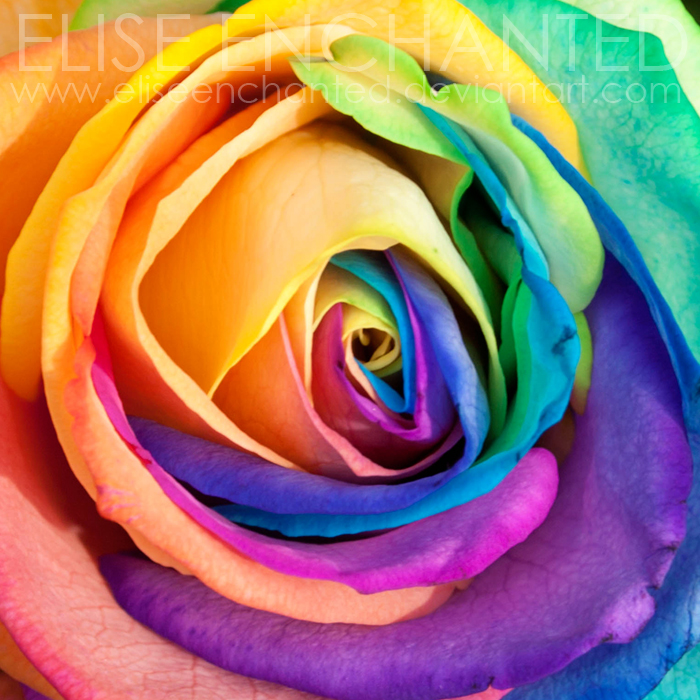 Colour me by EliseEnchanted